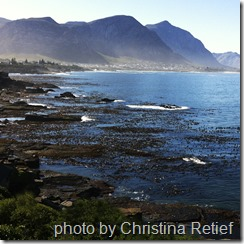 hermanus bay